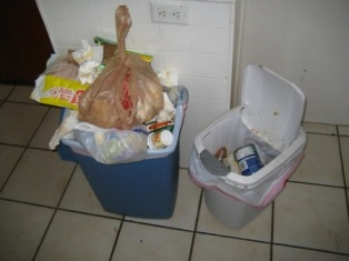 When I really thought about it though, most of my waste (and that of ...