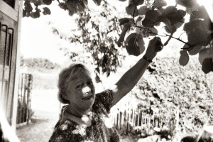 Here is my host mom, Annick, picking a kiwi from the tree in her garden.