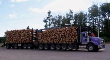 Timber Truck - Upper Peninsula, MI